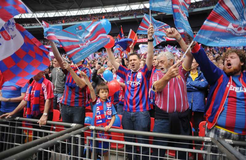 crystal palace supporter