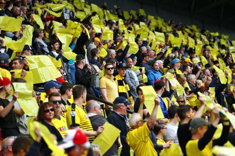 watford fans celebrating