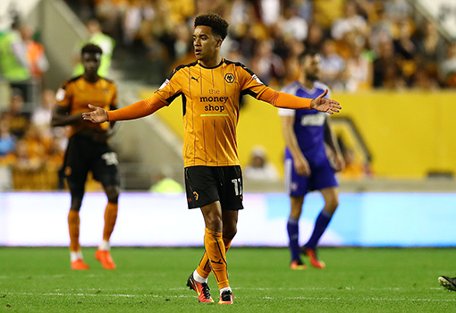 Wolves Player