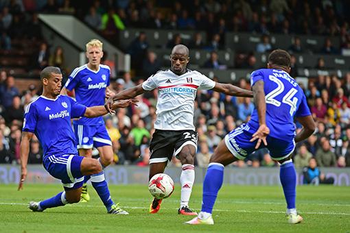 Fulham Match