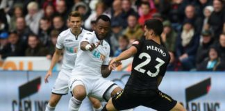 Swansea vs Newcastle PL Preview